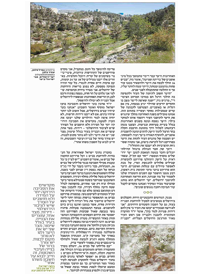 יער ירושלים מודל 2016 3 - שבועון ירושלים 22.1.16