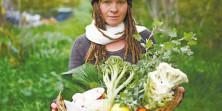 בעוד כמה שנים אולי יוכלו תושבי הערים לאכול פירות וירקות שגדלו באופן טבעי ביערות מאכל, […]